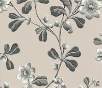 Обои Little Greene London wallpapers IV 0277BRMONOZ